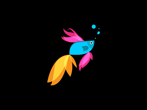 betta_fish_windows_81