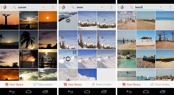 google_plus_search